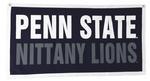 Penn State 18
