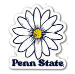 Penn State Daisy 3