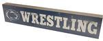 Penn State 12' Wrestling Table Top